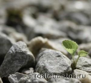 Где купить гранитный щебень 20-40 и др фр в Нижнем Новгороде выгодно?